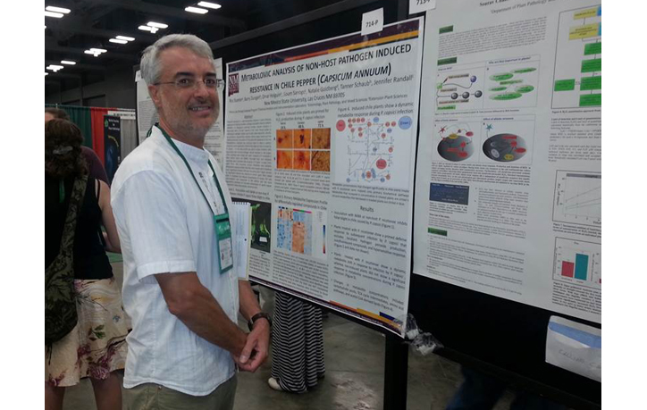 Enrico Bonello, Poster session