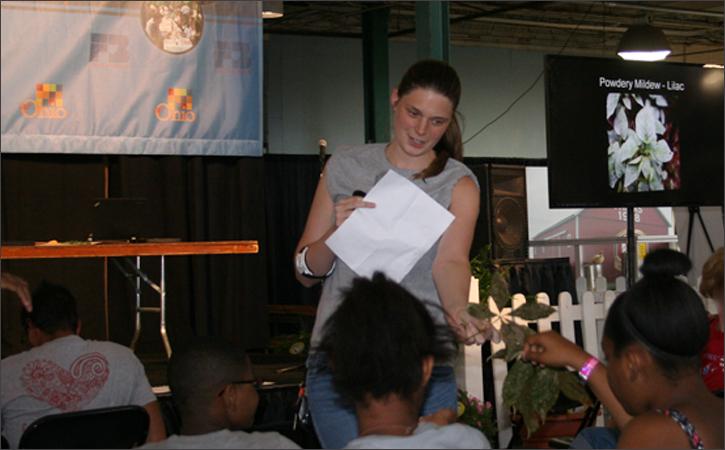 Dominique Alvis