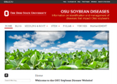 OSY Soybean Disease