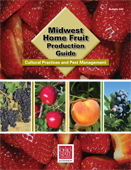 midwest home fruit production