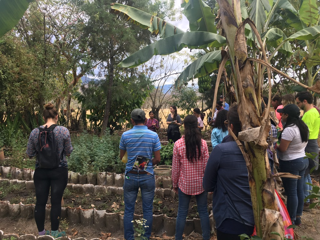 Tropical Agriculture class (with Prof. Caitilyn Allen, University of Wisconsin—Madison and Prof. Amilcar Sanchez at Universidad de San Carlos—Guatemala) learning about a regional, indigenous seed production NGO in Guatemala.