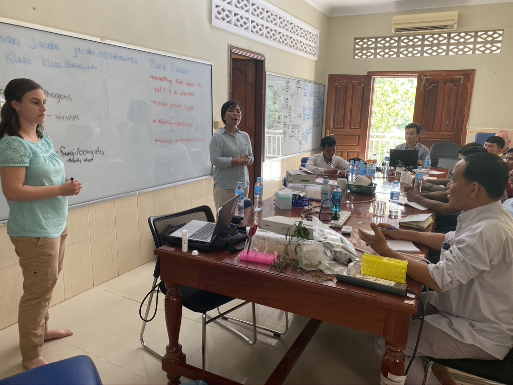 OSU Plant Pathology PhD Student Taylor Klass with collaborator Dr. Kimhian Seng from iDE Cambodia presenting to regional Cambodian extension agents about bacterial wilt management and diagnostics.