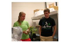 Summer Research Activities, Wooster