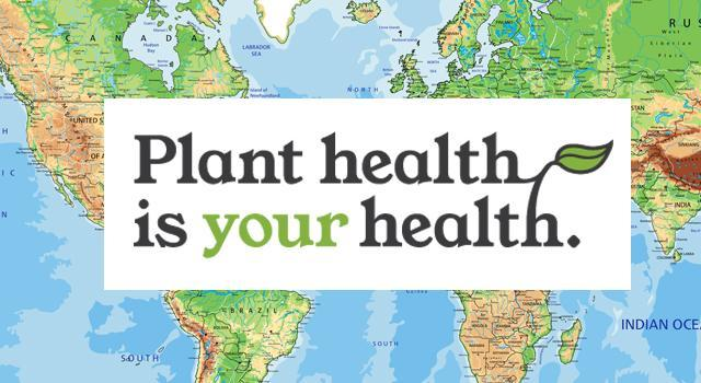 Plant health is your health