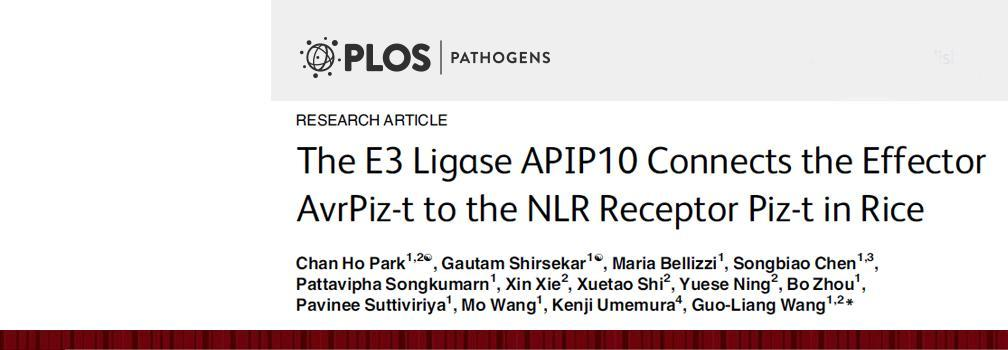 PLOS Pathogens article